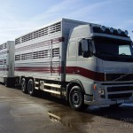 Camion bétaillère